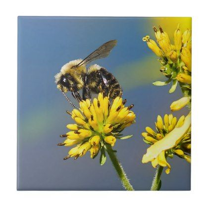 Bumble Bee on Yellow Wildflower Ceramic Photo Tile - flowers floral flower design unique style