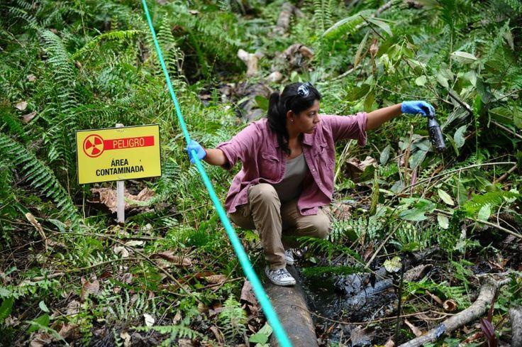 Noticias de Medio Ambiente y Ecología