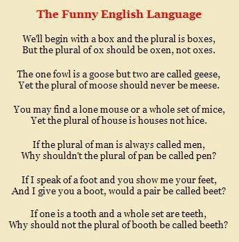 Funny english essay jokes