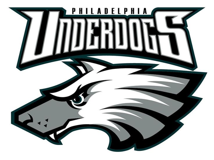 Congrats to the Philidelpjia Eagles for winning Super Bowl LII and Nick Foles being the MVP | Follow me on Pinterest (dubstepgamer5) for more pins like this.