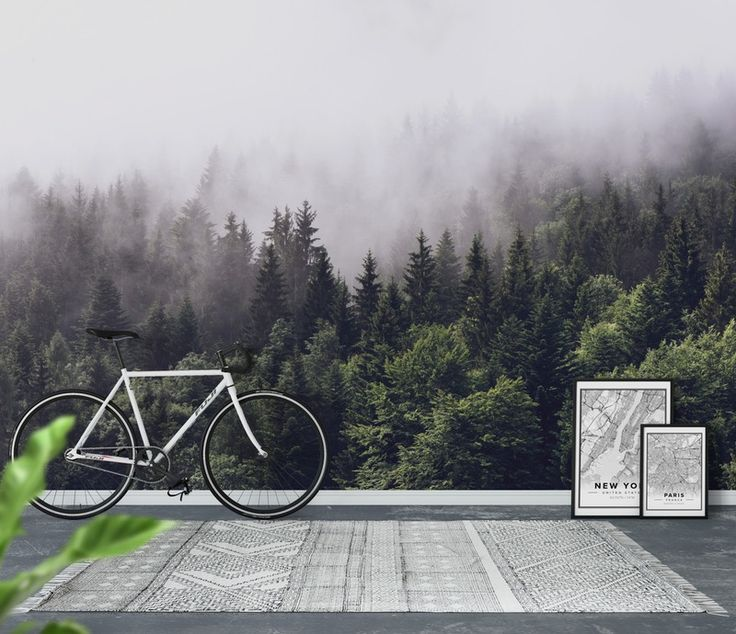 Tapet Cloudy forest | Fototapet | Dimma | Träd | Skog - Happywall