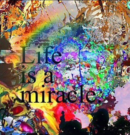 Yes, life is a miracle. I'm so thankful to be alive and healthy. I'm thankful that my children and my husband are healthy. Thank you.: Life Quotes, Life Inspiration, Happy Inspiration, Inspiration Motivation, Motivation Inspiration, Inspiration Dreamoutloud, Daily Life, Quotes Health, Inspiration Quotes