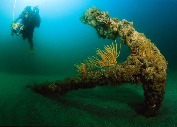 Queen Anne's Revenge Shipwreck | ... shipwreck site of the Queen Anne's Revenge, the pirate Blackbeard's