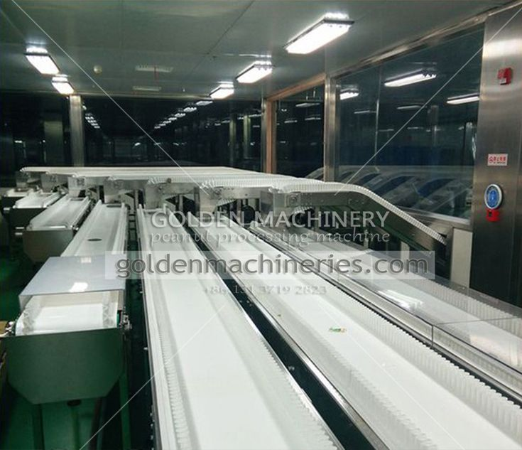 plastic belt conveyor system is mainly used for transferring nut material to related equipment for deep processing, it is equipped with light arrangement, seat arrangement, so it also has another function for sorting purpose.