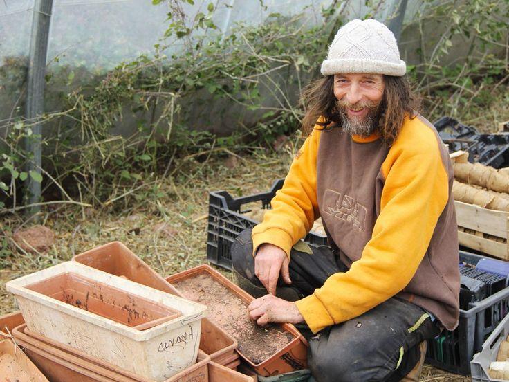 Les méthodes de Pascal Poot, loin de l'agriculture moderne, sont aussi hyperproductives que naturelles et peu coûteuses. Des scientifiques pensent y trouver des réponses au changement climatique.