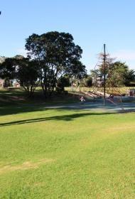 Coyle Park   gatherandhunt.co.nz
