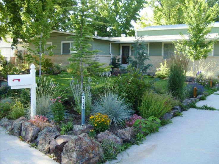xeriscape and sustainable gardening, have less lawn but a lot of curb appeal