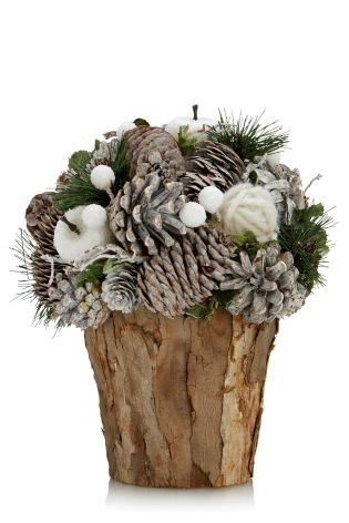Buy Frosted Pinecone Bundle from the Next UK online shop