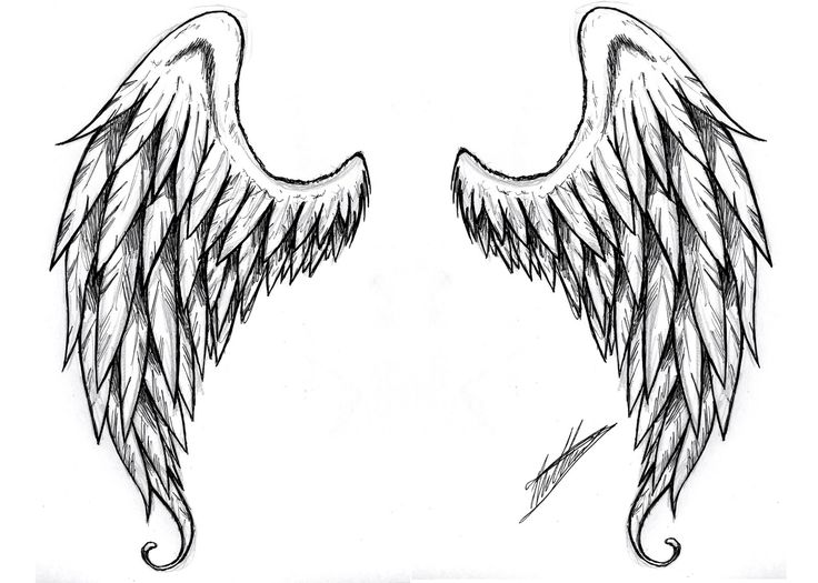 angel-wing-tattoo-design-tattoos-for-women-and-men-tribal-l-a ...