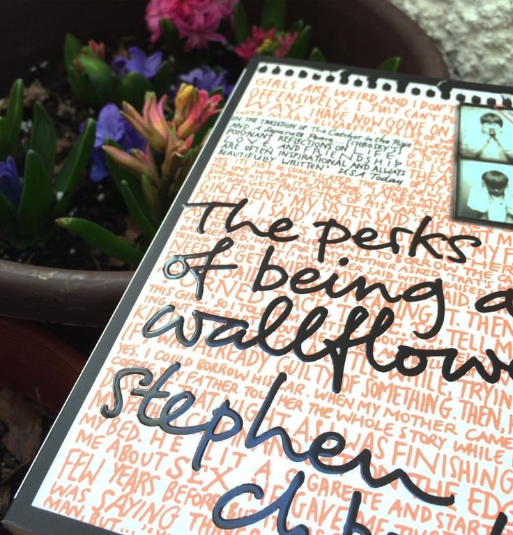 Almost two years since I read this book and still a fave among many others   #theperksofbeingawallflower #tpobaw #stephenchbosky #books #ya #booktag #bookstagram #spring #bookporn