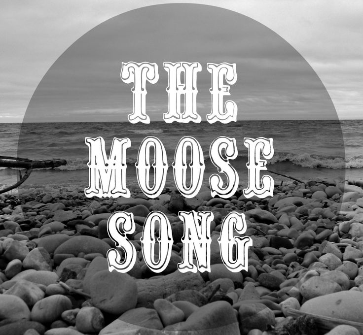 Crazy Moose Camping Song lyrics midi