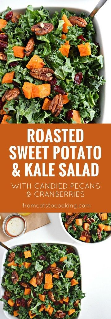 Topped with an easy homemade honey lemon vinaigrette, this healthy roasted sweet potato and kale salad with candied pecans and cranberries recipe is perfect for the holiday season. Eat this as a side dish or top with chicken for a quick dinner! | @catstocooking