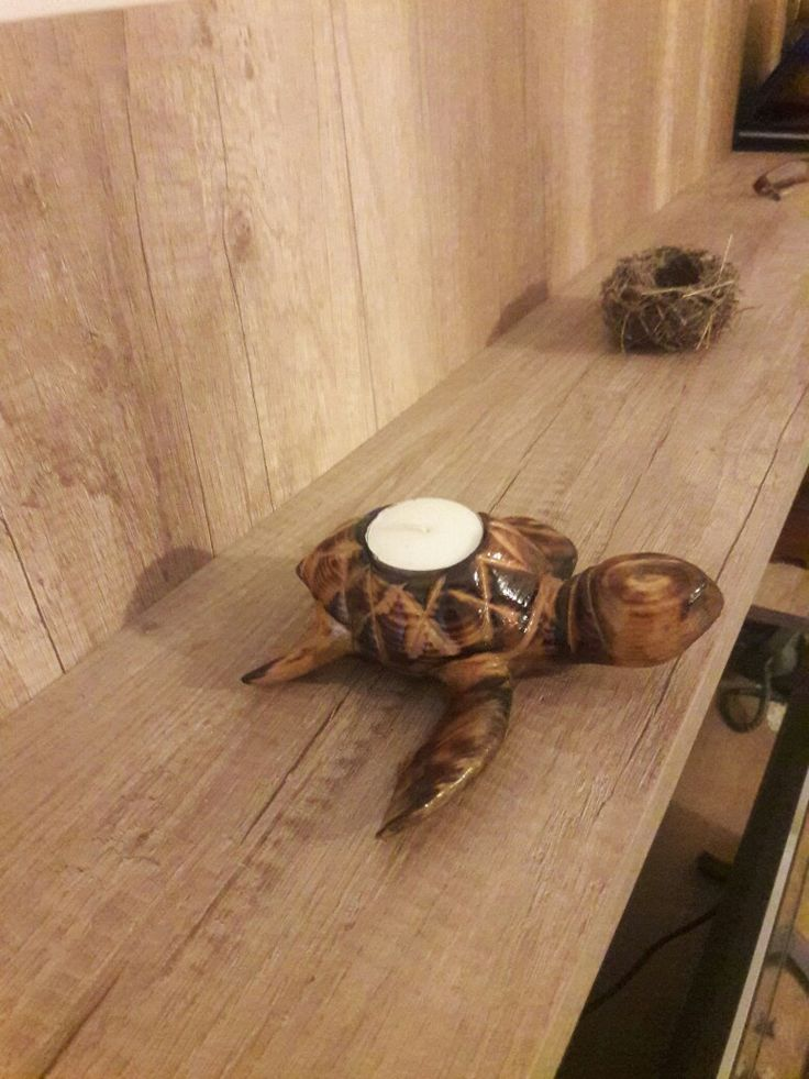 Kaplumbağa mumluk