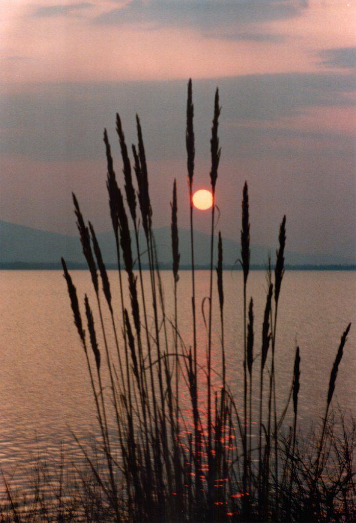 Sunset at Lake Trichonida (Aetolia-Acarnania)