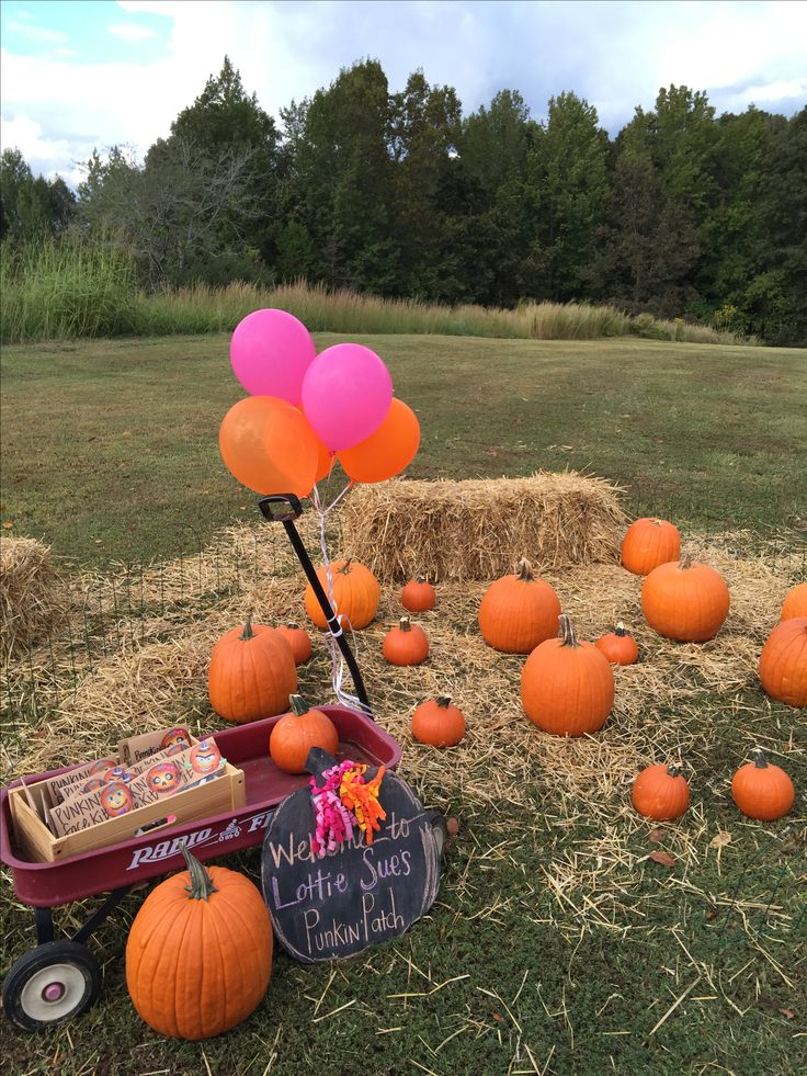Pumpkin and pink party. First birthday party. Pumpkin party. Our little pumpkin is one. Fall party. Pumpkin patch party. For more: Instagram @ihavethecoolestgoatever