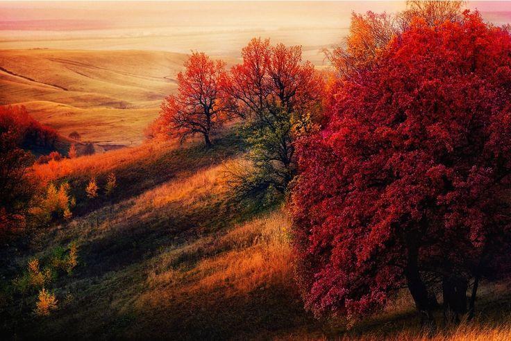Пост обожания осени