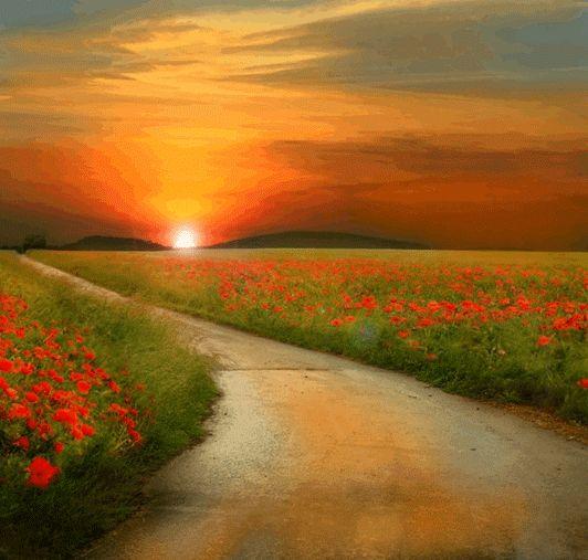 A Vida nos fala - Por Deise Aur: A Vida é o caminho para o Infinito !