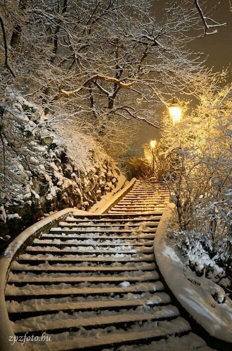 Steps encased in white and gold!