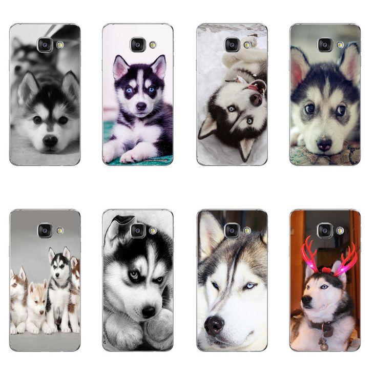 Mejores 1172 imágenes de Huskies en Pinterest | Huskies siberianos ...