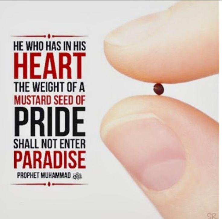 لا يدخل أحدكم الجنة وفي قلبه ذرة من الكبر