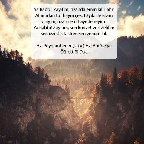 Ya Rabbî! Zayıfım, rızanda emin kıl. İlahî! Alnımdan tut hayra çek. Lâyıkı ile İslam olayım, rızan ile nihayetleneyim. Ya Rabbî! Zayıfım, sen kuvvet ver. Zelîlim sen izzetle, fakîrim sen zengin kıl. Hz. Peygamber'in (s.a.v.) Hz. Bürîde'ye Öğrettiği Dua