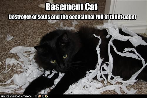 So Shaddix is Basement Cat huh? He totally destroyed my TP tonight, too...