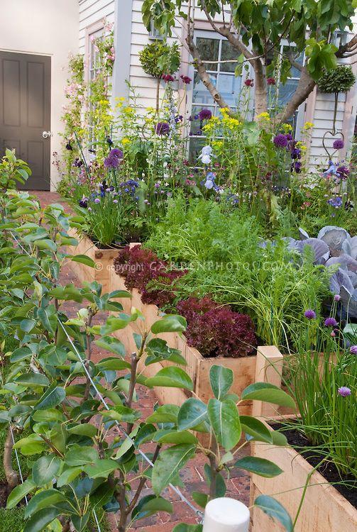 13 best Urban Gardening images on Pinterest Gardening Urban