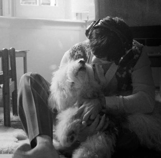 Paul McCartney's dog, Martha.... Dallas Pets Alive! | Saving Lives in Dallas