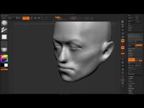 zbrush anatomy tutorial - YouTube