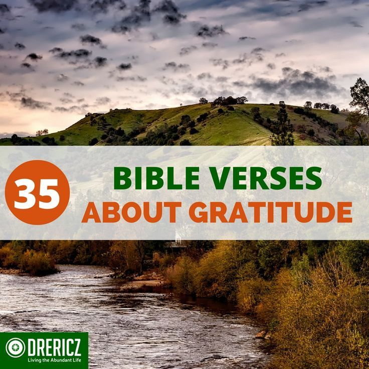 Here's a list of 35 bible verses about gratitude for you to read, study and…