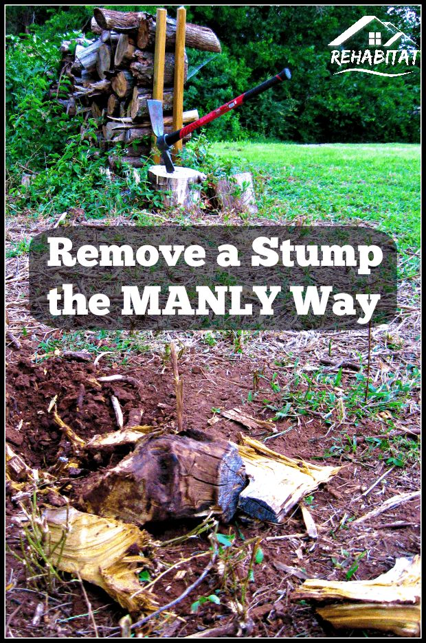 """Using a chainsaw to cut down a tree often leaves a nasty stump behind.  Instead of pulling the stump with a truck or grinding it down with a stump grinder, consider digging or cutting it out by hand.  The pictures shows a wood pile and red axe/pick type tool behind a pile of split wood representing what was left of the stump i removed.  This article discusses the use of a cutter mattock to remove A Tree Stump the """"Manly"""" Way 