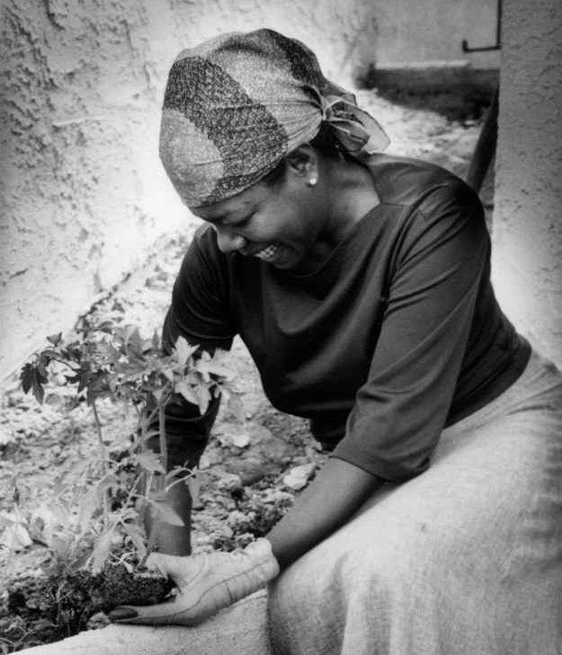 Maya Angelou - ever inspiring