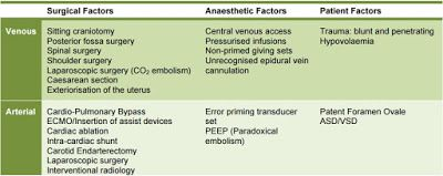 Cardiac Anesthesiologist: Risk Factors for Air Embolism.