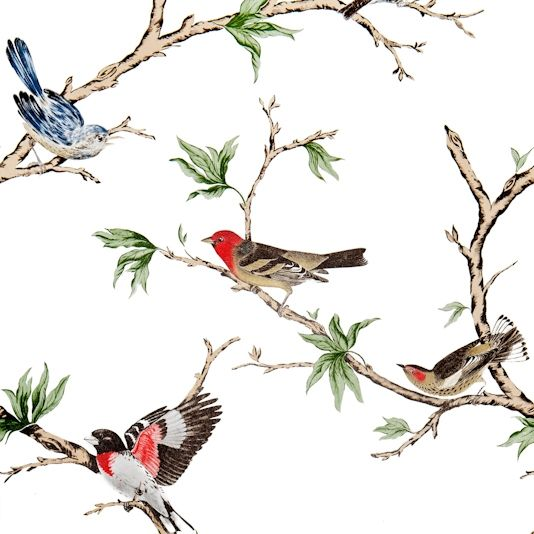 Villa Fioro Wallpaper A wallpaper showing colourful birds perched on branches on a white background.