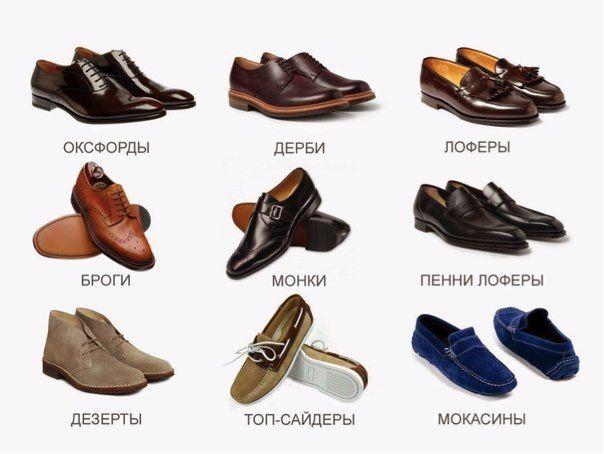 Мужская обувь и ее виды - броги, оксфорды, лоферы, кеды и ботинки