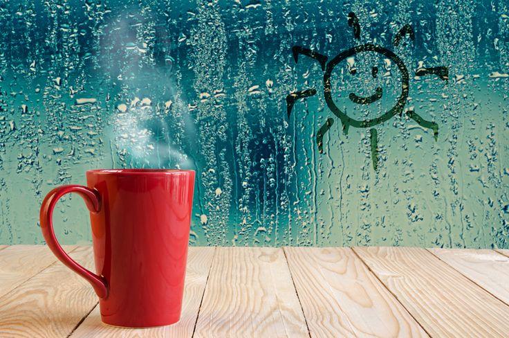 Top 25 Best Humidifier Ideas On Pinterest Best Whole