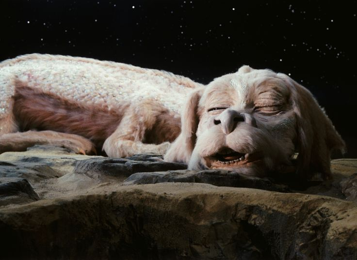 the neverending story essay A review of the successful film the neverending story by wolfgang petersen and brian johnson.