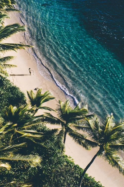 Ich bewundere immer die Kombination aus Sand, Bäumen und Strandwasser! Es schafft immer