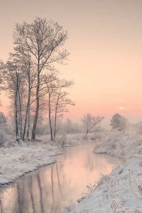 Pink sun haze in winter. Magical moment.