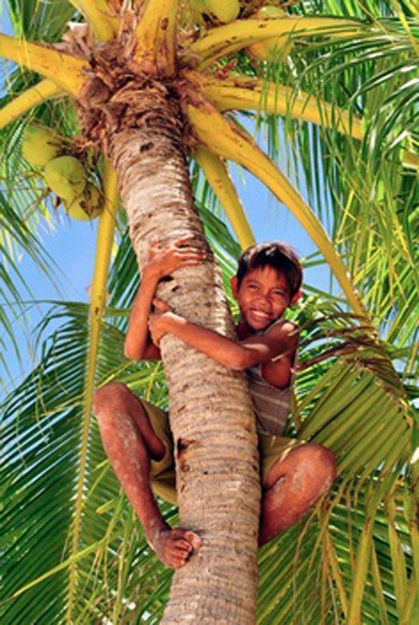O velho mundo sempre teve uma queda pelo exotismo das terras tropicais! Não existe pecado nesse pedaço do equador, somos livres para misturar todo tipo de cor, estampa e promover o exagero do nosso jeito, com flores pássaros e tudo mais que der vontade. Deu vontade de ser tropical? Chega mais!!!