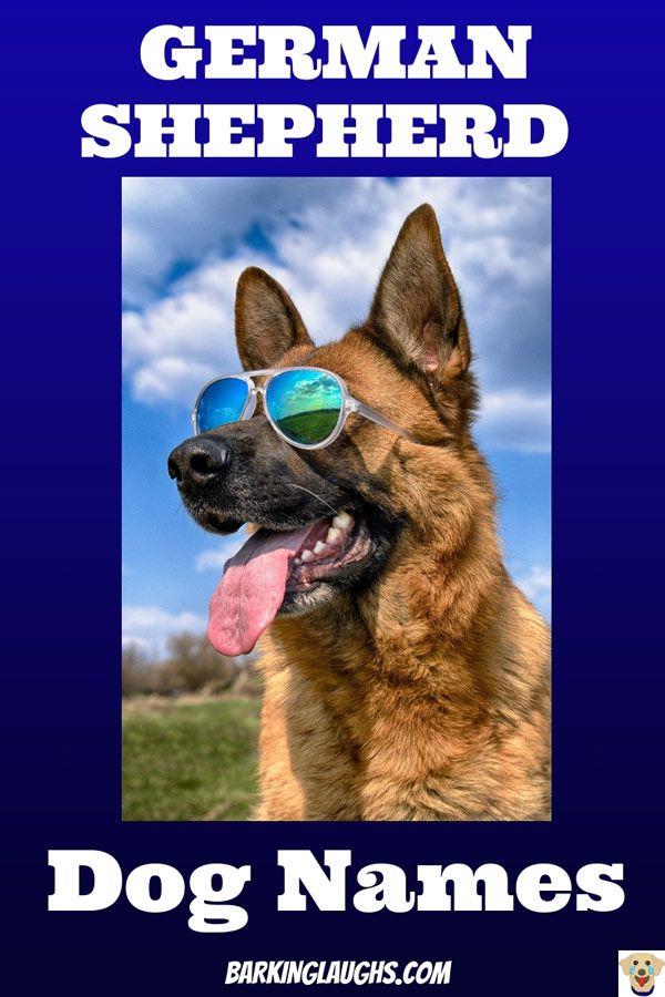 The Best Dog Names For German Shepherds Boy Dog Names Dog Names