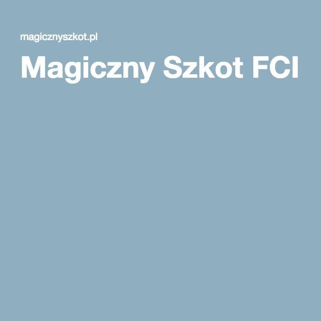 Magiczny Szkot FCI