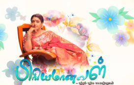 techsatish - You Love It ! Watch tamil Tv Serials, Tv shows Online: Priyamanaval