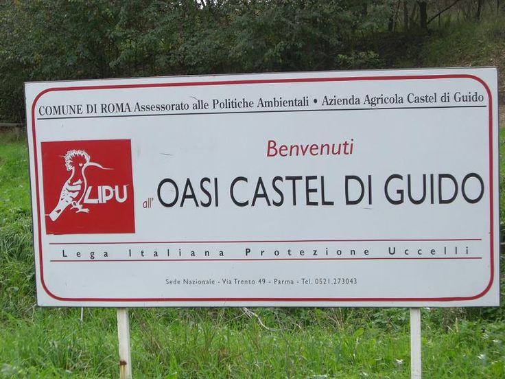 Oasi di Castel Di Guido