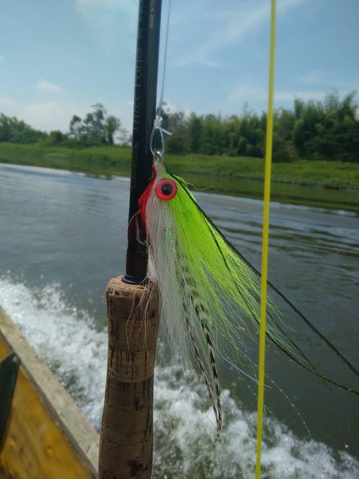 mosca para pesca de picuda salminus affinis
