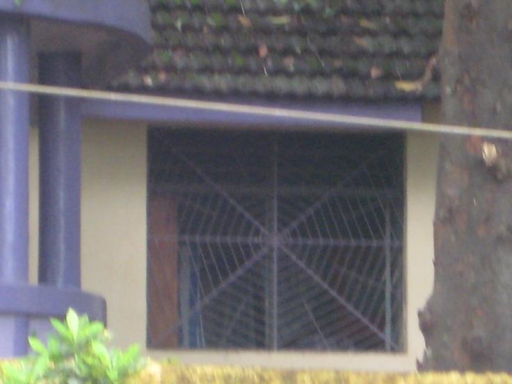 Spooky cobweb window!