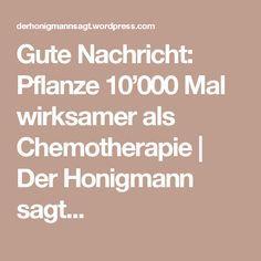 Gute Nachricht: Pflanze 10'000 Mal wirksamer als Chemotherapie   Der Honigmann sagt...