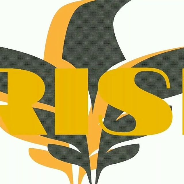 Reposting @barz_camp: Rise - YouTube http://crwd.fr/2ycQ3o0  Check out the whole Album Free!  Subscribe to our YouTube! We love comments and thoughts! Negative or positive it is like relative! Available on Spotify/Apple/Tidal +more!  Streams appreciated downloads encouraged!  #hiphop #rap #music #instagood #art #rapmusic #barzcamp  #hiphopartist #soundcloud #rapper #barzcampbeforecommonera #hiphopart #hiphoprapper #musician #producer #dartagnan_reigns_supreme #singing #motivation #spotify…
