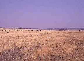 Explanation of the four major types of deserts:     Hot and Dry,     Semiarid,     Coastal,     Cold