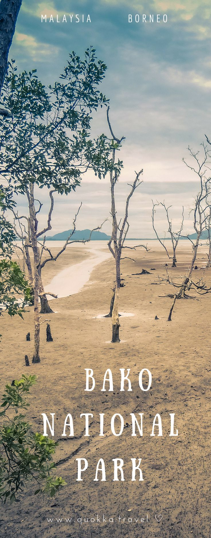 Bako National Park is established in 1957 and covers about 27 square kilometres. This makes Bako one of the smallest national parks of Sarawak on Borneo. The park is conveniently located, just 40 km from Kuching – the capital of Sarawak. It is definitely worth spending at least one day at Bako National Park, not in the first place to spot the famous proboscis monkeys! Check our out travel tips to have the perfect Bako experience.